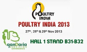 Poultry-India