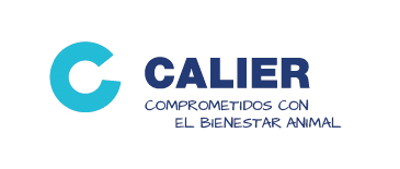 calier-despadac-ready-desinfectante-multiusos